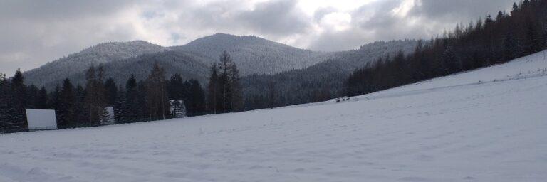 Szczebel z okolic Lubnia
