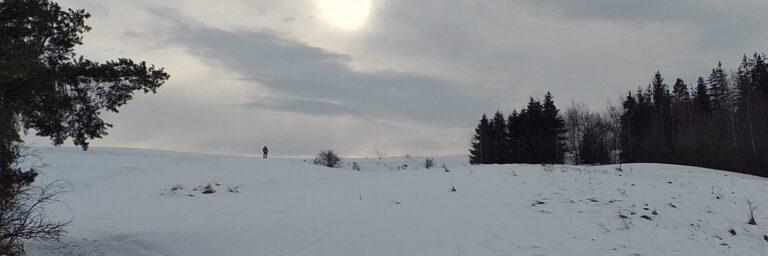 [2021-02-19] Maciejowa