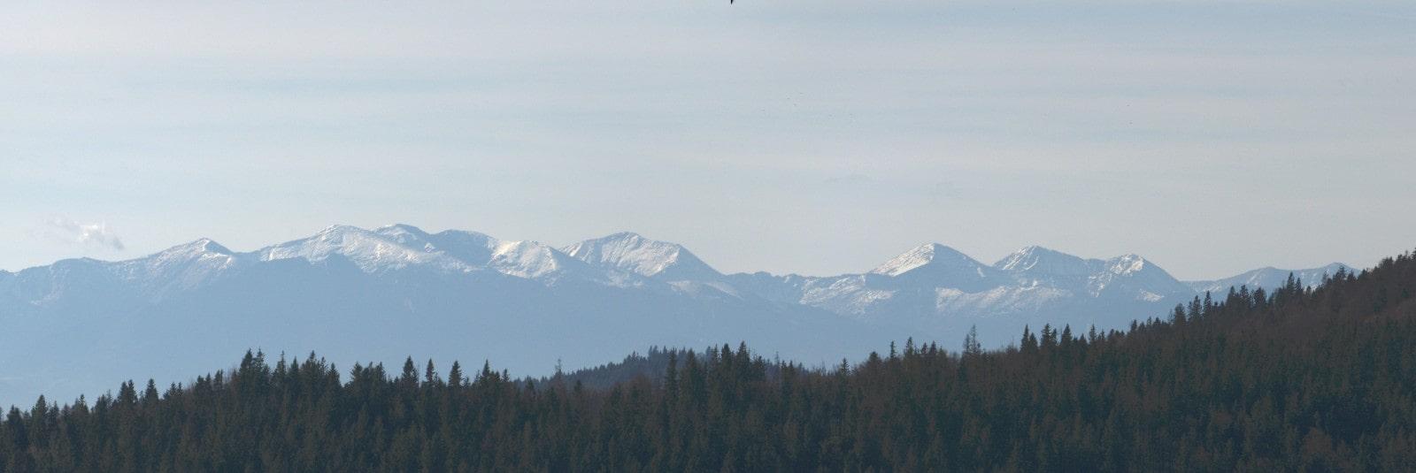 Tatry Zachodnie widziane z polany Świnkówka